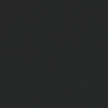 PAQUETE 50 CARTULINAS IRIS A3 185 GR. NEGRA