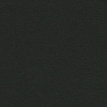 PAQUETE 25 CARTULINAS IRIS 50X65 185GR. NEGRO