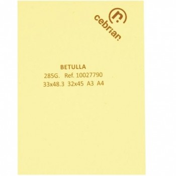 PAQUETE 100 HOJAS A3 285GR. CARTULINA WOODSTOCK BETULLA