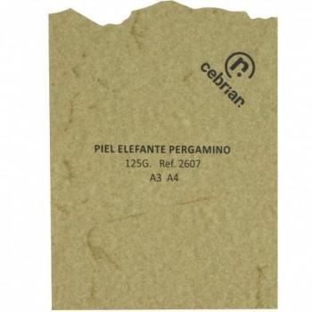 PAQUETE PERGAMINO 25 HOJAS PIEL ELEFANTE PERGAMINO A4 125G